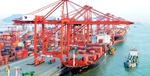 Viet Nam's trade surplus narrows in first four months of 2019