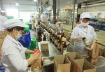Traditional fish sauces need to be promoted: experts