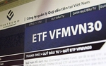 VFMVN30 becomes largest domestic exchange-traded fund