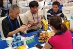 Vietnamese enterprises seek export opportunities in China
