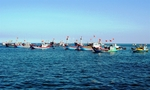 Fishermen urged to fight illegal fishing