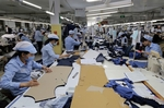 Garment, footwear firms must wait for EVFTA benefits