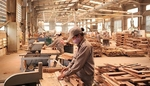 Wood and forest products exports exceed $6b