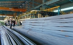 Steel firm Pomina to raise capital by 15 per cent