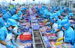 Seafood exports pick up but challenges continue