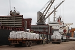 Cement, clinker exports on track to reach yearly target