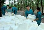 Dong Phu Rubber fulfils half of profit target