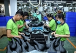 Viet Nam to select quality foreign investment