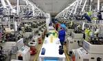 Viet Nam manufacturing sector improves in December