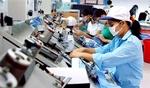 Viet Nam sees positive labour growthin 2019
