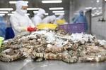 Minh Phuopposes US anti-dumping duty on frozen shrimp