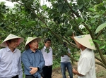 Public-private co-operation helps Mekong farmers overcome double challenge