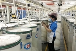 Quang Ninh aims for processing & manufacturing industry to be keypillar