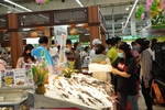 Dong Thap pangasius week opens in Ha Noi