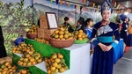 Week of Muong Khuong mandarins opens in Ha Noi