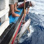 Steering committee toguide maritimeeconomy