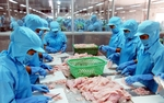 Seafood export value down in January