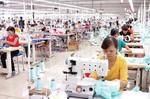 Material autonomy key for Viet Nam to fully exploiting EVFTA