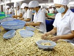 VN aims to become global agriculture powerhouse