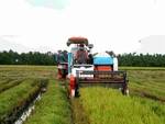 Viet Nam will promote agricultural mechanisation: PM