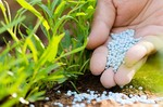 Safeguard measures on imported fertilisers extended until 2022