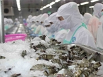 Sao Ta Food plans to buy back 2 million treasury shares