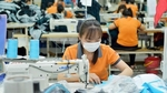 Viet Nam's garment exports down in two months
