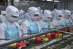 Pandemic has little impact on Viet Nam's shrimp exports