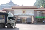 MARD requests businesses to temporarily stop transport of export farm produce to Lang Son