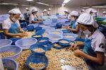 Vinacas tells cashew enterprises to trade carefully