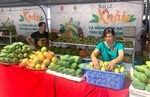 Son La exports mangoes to China