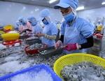 Australia to impose new regulations on prawn imports
