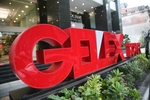 Gelex CEO to raise ownership