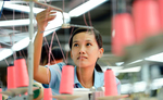 Viet Nam should enhance its productivity to grow: WB