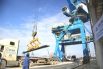Steelmaker Hoa Phat aims for19 per cent profit growth