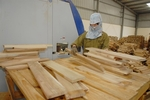 Trade defence investigations into wood products on the rise