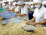 Binh Duong first half trade surplus hits $2.6b