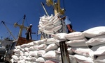 Viet Nam to increase rice exports to EU under EVFTA