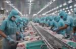 Soc Trang exports jump 26% despite pandemic