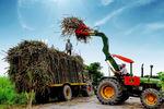 Viet Nam promotes measures to manage local sugar market