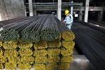 Hoa Phat Group lists 552 million more shares