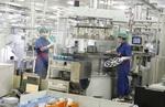 FDI reaches $19.54 billion in 8 months