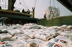 Viet Nam exportsnearly 4m tonnes of rice in seven months