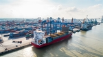 Seaport companies less affected amid pandemic