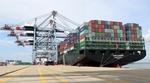 Viet Nam to develop international standard ports