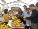 E-commerce can take Vietnamese farm products to global market: workshop