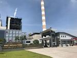 Thermal power companies report profit despite pandemic