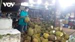 Hoc Mon Wholesale Market in HCM City reopens