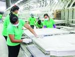 Binh Duong secures $301.5 million in FDI in two months