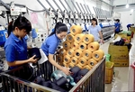 Gov't needs to providemore supportfor SMEs in taking advantage of theEVFTA